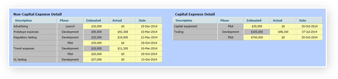 Comparing Planned vs. Actual Capital and Non-Capital Project Costs