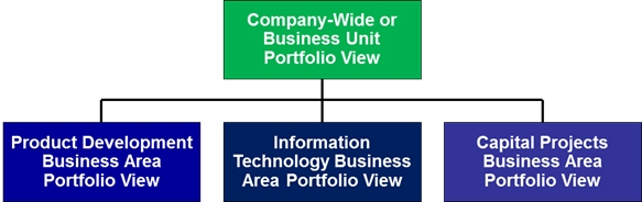 Business Area Structure for Company-Wide Project Portfolio Management
