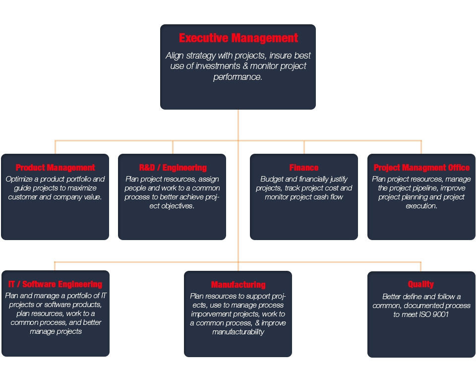 Project Portfolio Management Roles and Responsibilities by Functional Department